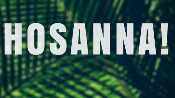 hosanna! #hosanna #palmsunday #palms