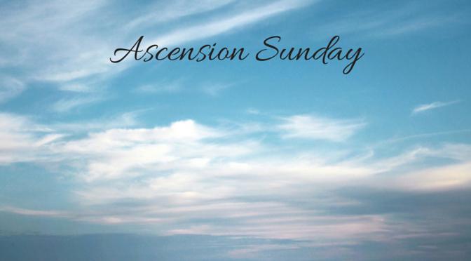 ascension wordpress header